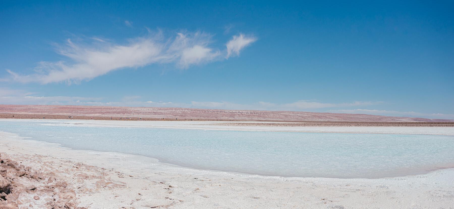 Deserto do Atacama, Chile. Lagunas Baltinache. - pamela wille fotografia